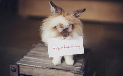 Single na Valentína